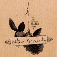 Peter Doherty - Last Of The English Roses