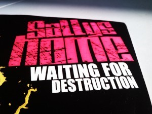 Sallys Home - Waiting For Destruction