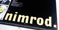 Green Day - Nimrod (Relançamento em LP)