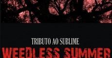 Califaliza e Sublime Cover em Florianópolis