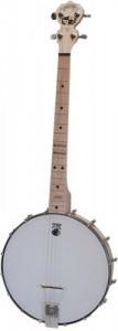 Dropkick Murphys Banjo
