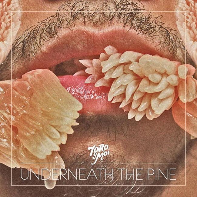 Toro Y Moi - Underneath The Pine