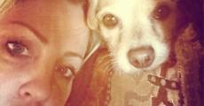 Brody  Dalle e Veela, cadela de Shirley Manson