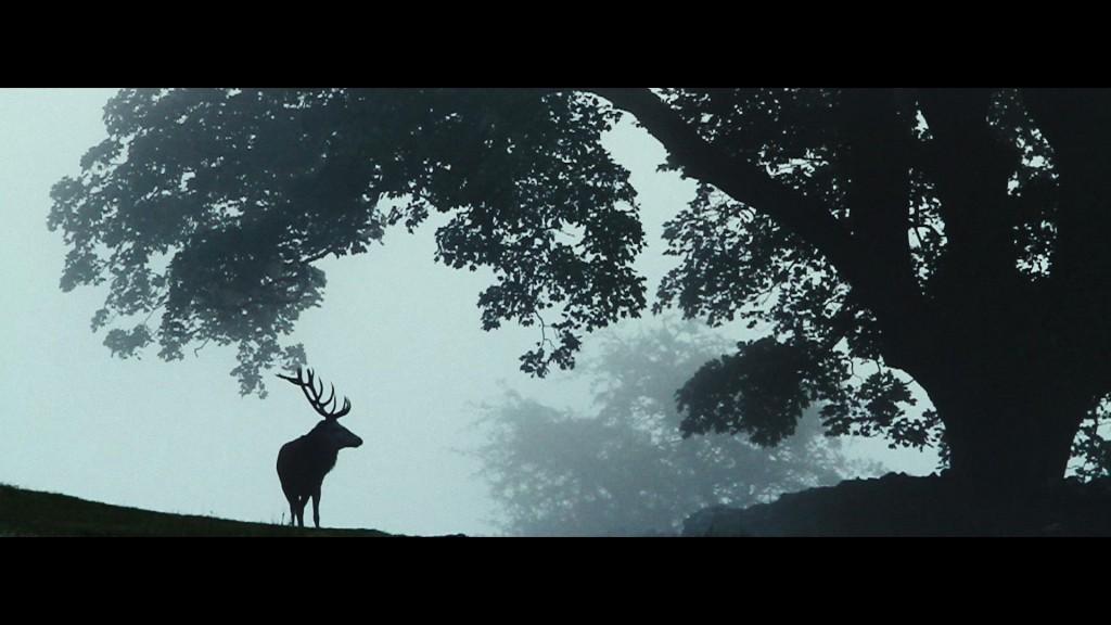 Assista ao novo clipe do Mumford and Sons