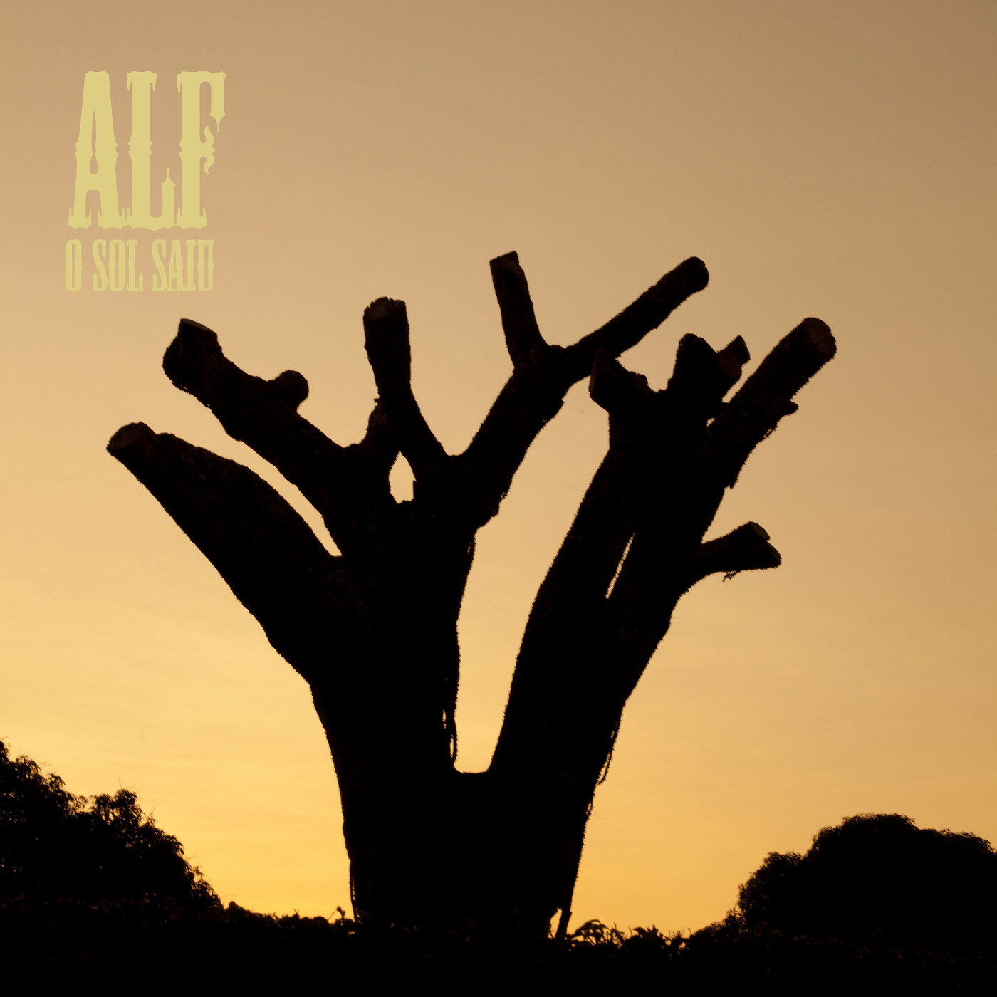 Alf (Rumbora) - O Sol Saiu