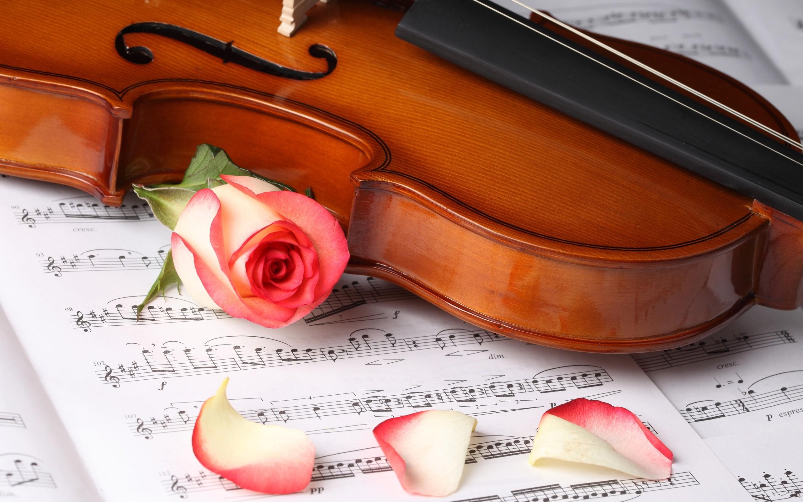 In memoriam: Artistas do meio musical que faleceram em 2013
