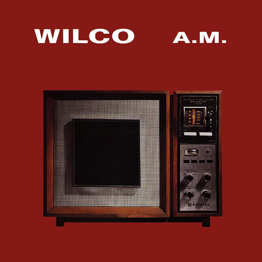 am-WILCO-20-anos