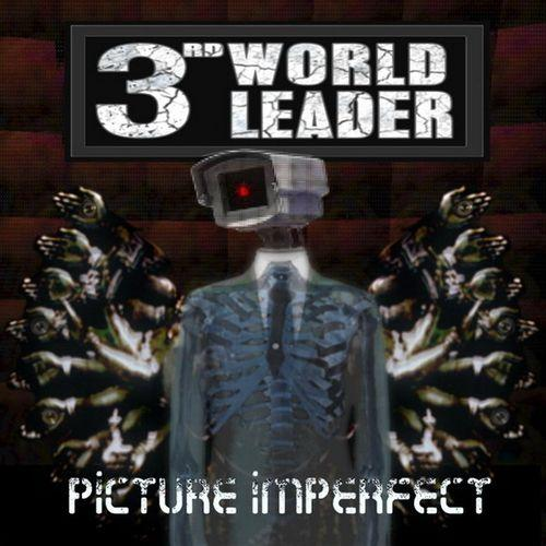 3rd World Leader - Picture Imperfect