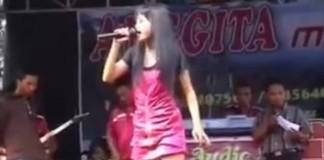 Cantora morre após ser picada por cobra em show