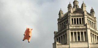 Porco voador do Pink Floyd