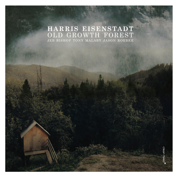 Harris Eisenstadt - Old Growth Forest