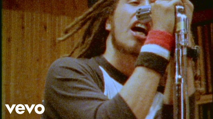Rage Against The Machine no clipe de Testify