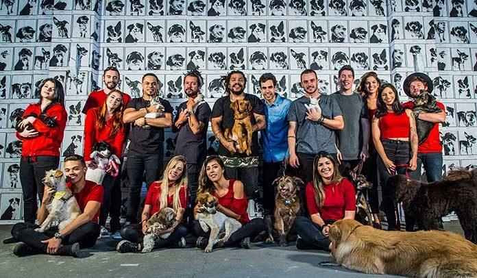 Onze:20 lança clipe fofo para promover adoção de animais