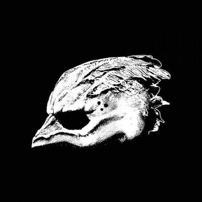 The Legend of the Seagullmen - capa