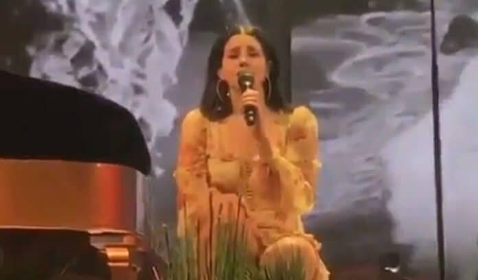 Lana Del Rey chora no palco