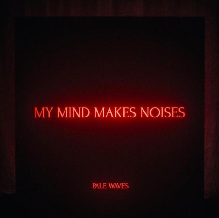 "capa do disco ""my mind makes noises"" do pale waves"