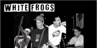 White Frogs - Radio Session
