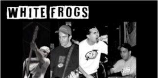 White Frogs - Radio Session