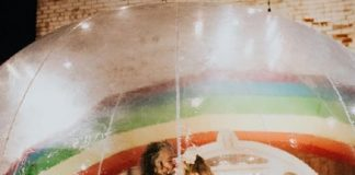 Wayne Coyne (Flaming Lips) se casando na bolha
