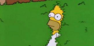GIF do Homer Simpson