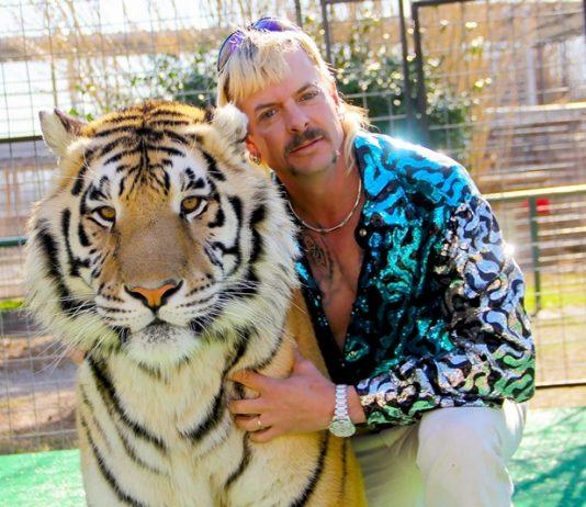 Documentarios Mafia dos Tigres