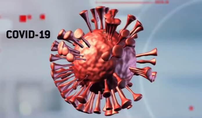 Vacina contra o novo Coronavírus