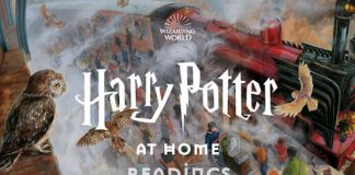 Harry Potter em Casa