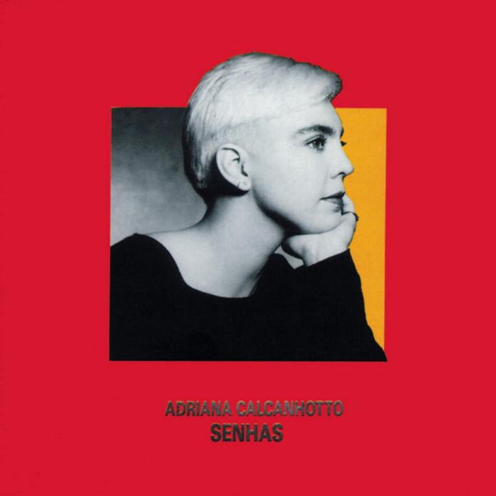Adriana Calcanhotto - Senhas