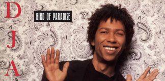 Djavan - Bird of Paradise
