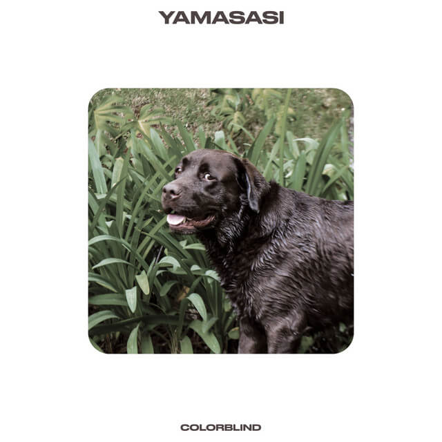 Yamasasi - Colorblind