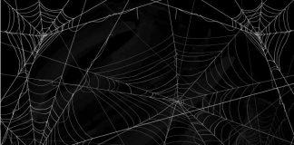 Teia de aranha musical
