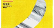 Grandes nomes da música se unem em disco de covers do The Velvet Underground